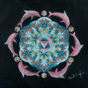 Pink Flower of Life Dolphin Mandala by Gail Alexander