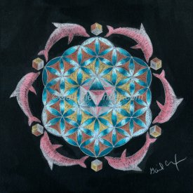 Pink Flower of Life Dolphin Mandala
